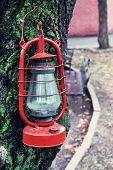 Kerosene lamp on tree, outdoors