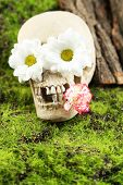 Skull with flowers on green grass background