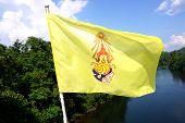 King Rama Nine Flag