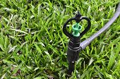 foto of sprinkler  - close up of sprinkler on green grass - JPG