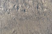 image of mud  - Small tidal creeks on a mud flat with draining water creeks - JPG