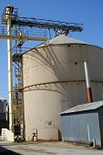 pic of animal husbandry  - This Central California plant processes animal feed - JPG