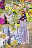 picture of black-cherry  - Baby colorful clothes blue white black colors on hangers hanging on the pink japanese cherry blossoms tree in broad daylight in the garden vertical picture - JPG
