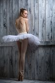 picture of tutu  - Modest ballerina standing near a wooden wall on pointe in a tutu - JPG