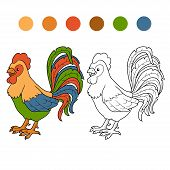 foto of rooster  - Game for children - JPG