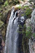 Springbrook cascadas 2