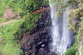 Springbrook cascadas 3