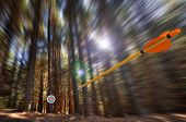 Arrow flying to target with radial motion blur poster