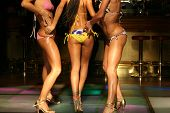 picture of club party  - girls body in bikini in night club - JPG