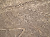 stock photo of geoglyph  - Aerial view of Nazca Lines in Peruvian Desert - JPG