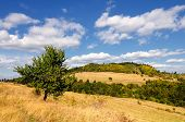 foto of banska  - Autumn landscape with tree and blue sky with clouds - JPG