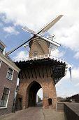 Windmill In Dutch Duurstede