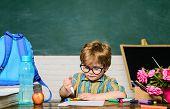 Schoolboy Doing Homework In Classroom At School. Elementary School Kid Sitting At Desk. Education. K poster