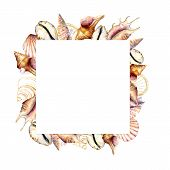 Watercolor Square Frame With Golden Shells. Hand Painted Sea Shells Card Isolated On White Backgroun poster