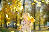 Adorable Young Girl Having Fun On Beautiful Autumn Day. Happy Child Playing In Autumn Park. Kid Gath poster
