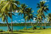 Tropical resort destination in Port Vila, Efate Island, Vanuatu, with beach and palm trees poster