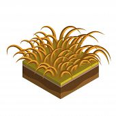 Grass And Soil Tile With Layers Isometric Vector. Dry Autumn Withered Grass With Fallen Leaves, Snow poster