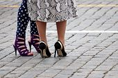 High-heeled Shoes, Female Fashion. Two Stylish Women Stand On The Street In High Heels poster