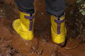 Yellow Rubber Rain Boots