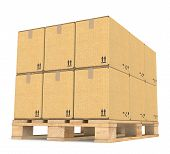 image of pallet  - Perspective view of Cardboard boxes on a Pallet - JPG