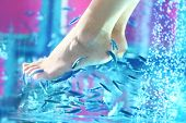 foto of fish skin  - Pedicure fish spa - JPG