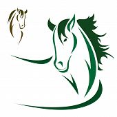 image of mustang  - Vector head of horse on a white background - JPG
