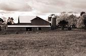 Farm In Pennsylvania. B&w