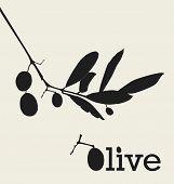 Retro Olive Design