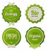 Eco Vintage Labels Bio template set. Ecology theme.  Retro design. Extra High quality. 3D Vector.