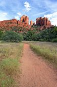 Track To Cathedral Rock