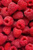 Ripe Rasberry Fruit Horizontal Close Up Background.