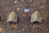 stock photo of gabled dormer window  - Old brown tile roof with two small dormer - JPG