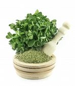 Mortar With Fresh Thyme Herb