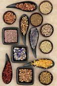 stock photo of wiccan  - Herbal medicine selection also used in witches magical potions over old brown paper background - JPG