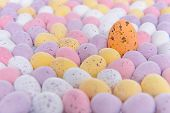 Lots of mini candy covered chocolate Easter eggs with one standing out from the crowd.