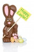 Chocolate bunny holding a sign that says Hoppy Easter, with some candy eggs at his feet. Isolated on