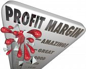 Profit Margin Measure Earnings Income Net Money Made