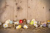stock photo of gap  - Easter colored eggs in nest - JPG