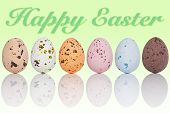 Six candy coated chocolate Easter eggs in a line, with the text Happy Easter on a graduated background.
