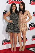 LOS ANGELES - MAR 5: Ariel Winter, Shanelle Workman at the premiere of 'Mr. Peabody & Sherman' at Re