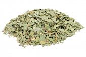 pic of eucalyptus leaves  - crushed eucalyptus leaves to prepare herbal tea on a white background - JPG