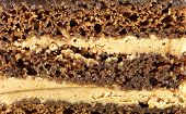 texture of chocolate cake