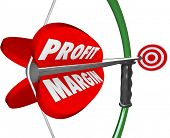 Profit Margin Competition Aiming Bow Arrow Target Win Game