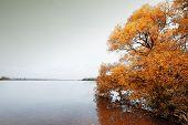Island Melancholic Autumn