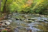 Peaceful Fall Morning by the river in the Smoky Mountains