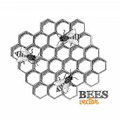 stock photo of honeycomb  - Honey bees and honeycomb isolated vector illustration - JPG