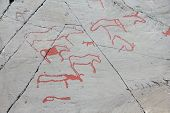 foto of rock carving  - Rock carvings on stone at Alta Norway - JPG