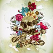 pic of day dead skull  - Skull and Flowers Vector Illustration Day of The Dead - JPG
