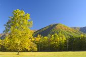 Cades Cove In Late October