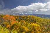 Lane Pinnacle On Blue Ridge Parkway, North Carolina, Usa In Autumn Color.